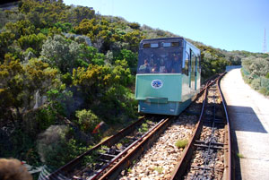 Cape Point Tram